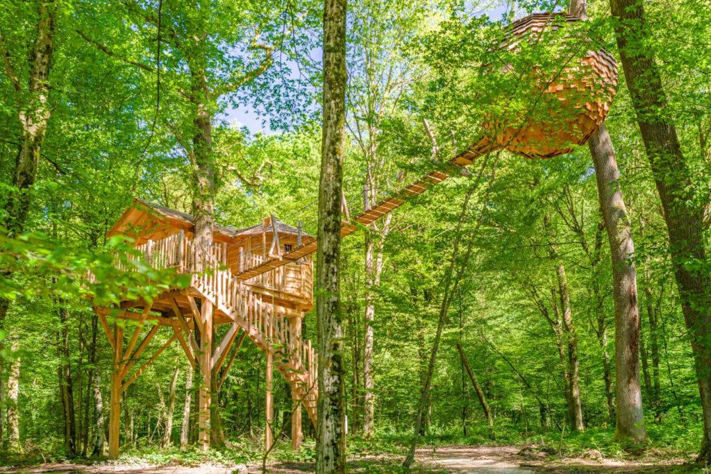 Lovnid_cabane_arbres